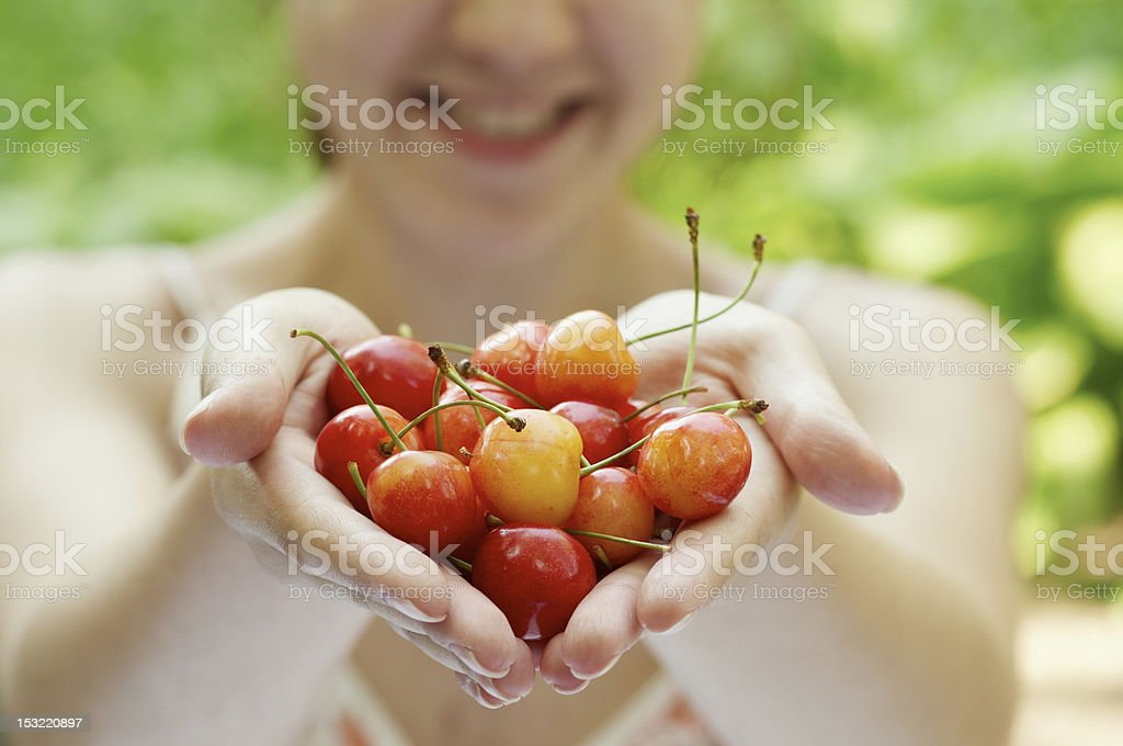 she holds a handful of cherries stock photo
