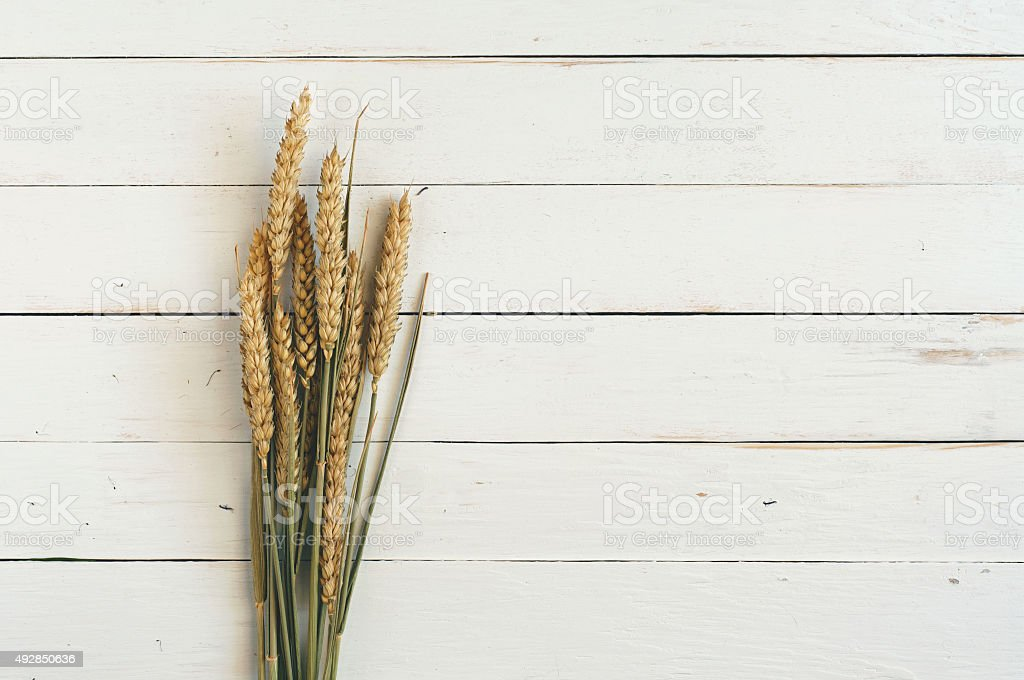 sheaf of spikelets of wheat on the wooden table closeup stock photo