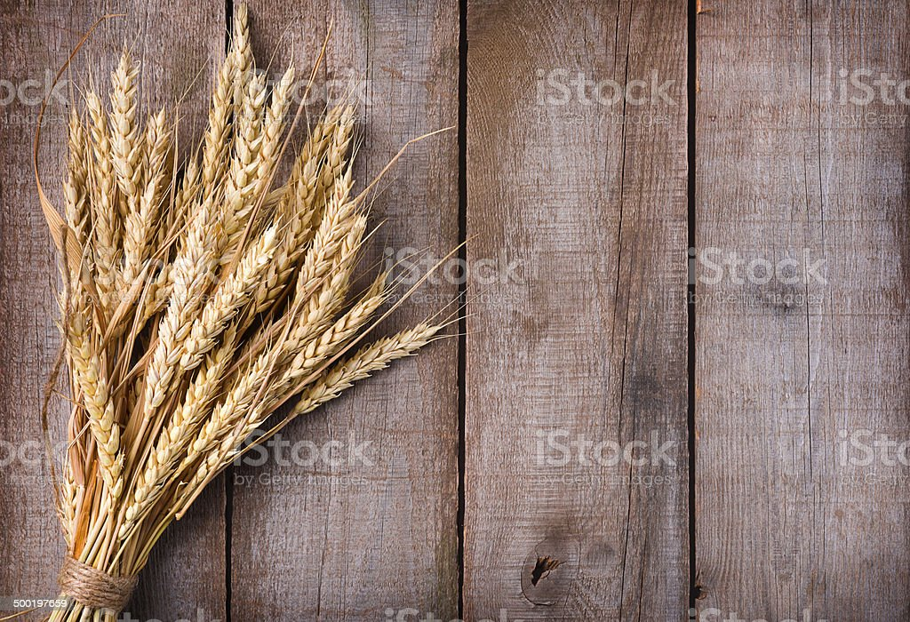 Sheaf of wheat ears on wooden table stock photo