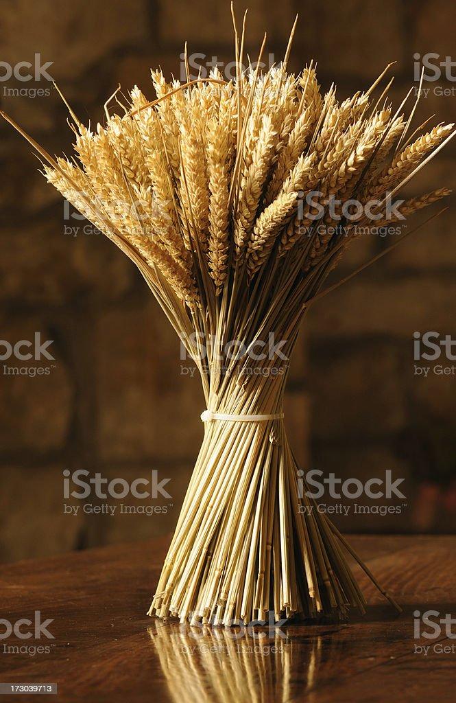 Sheaf of Wheat royalty-free stock photo