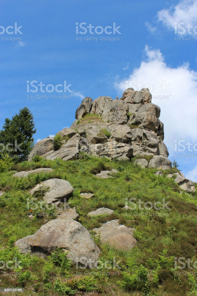 sheafs of hay standing in Carpathian mountains stock photo