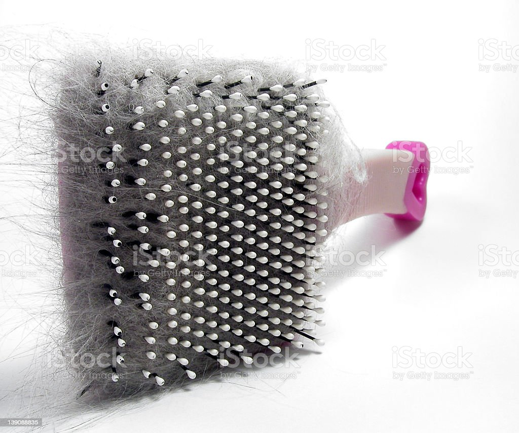 Shedding Much? royalty-free stock photo