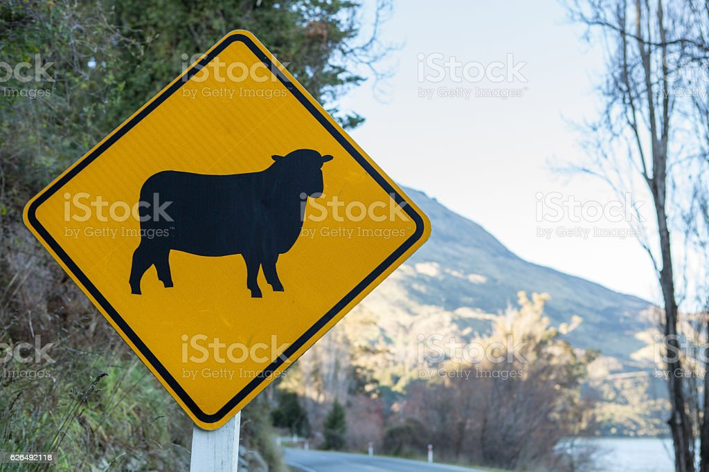Sheep crossing sign on road, New Zealand stock photo