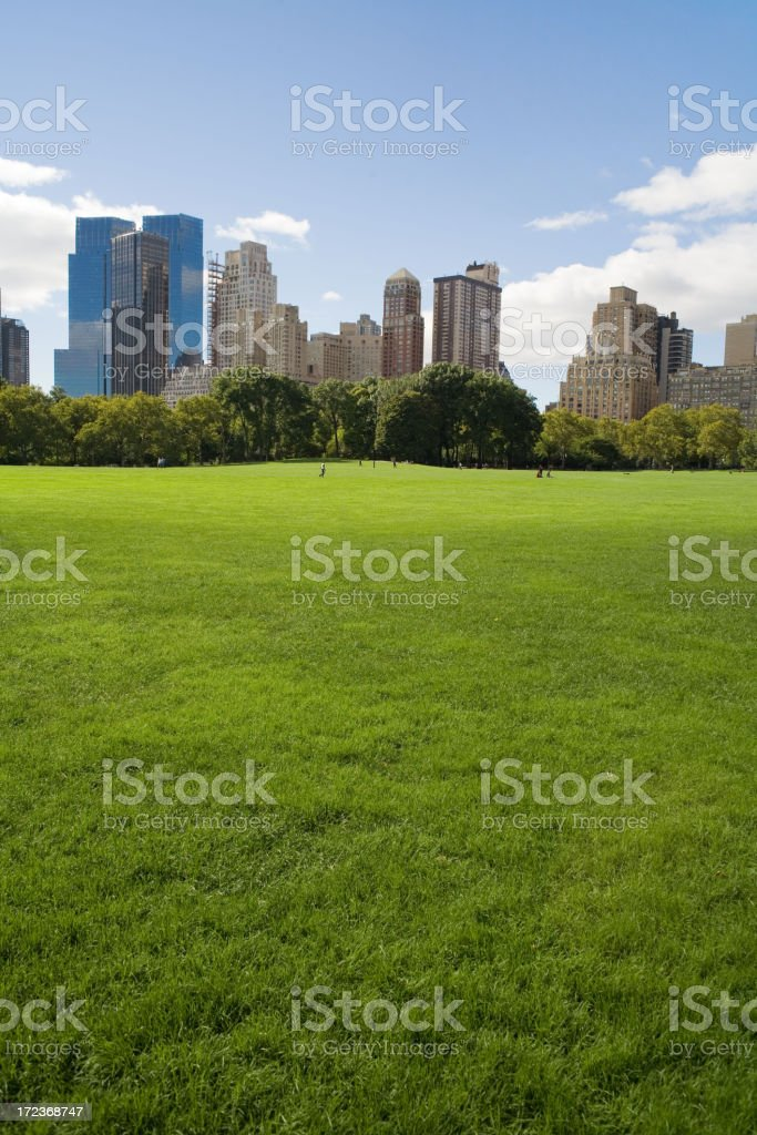 Sheep Meadow royalty-free stock photo