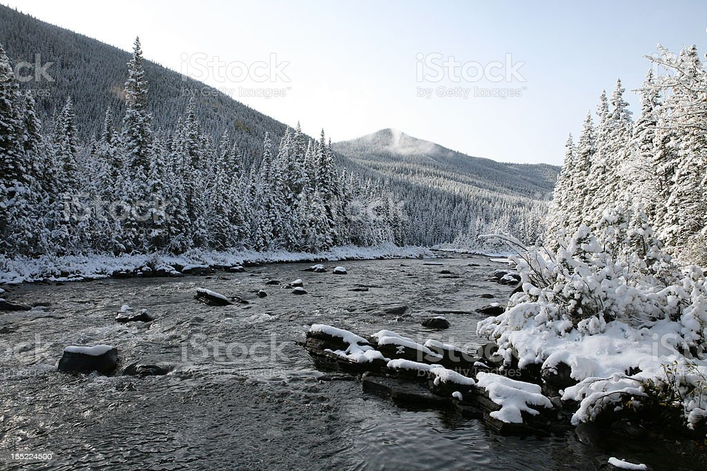 Sheep River in snow. stock photo