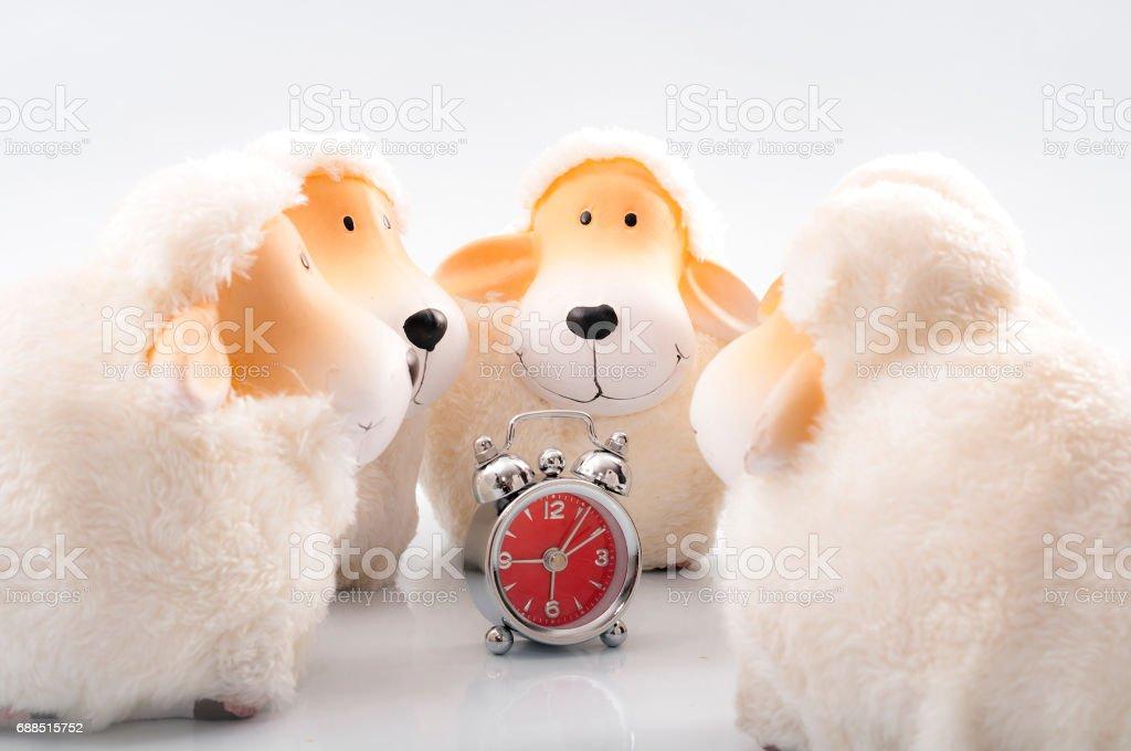 Sheep surrounding an alarm clock, sleep disorder concept stock photo