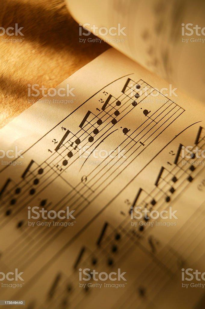 Sheet Music 13 royalty-free stock photo