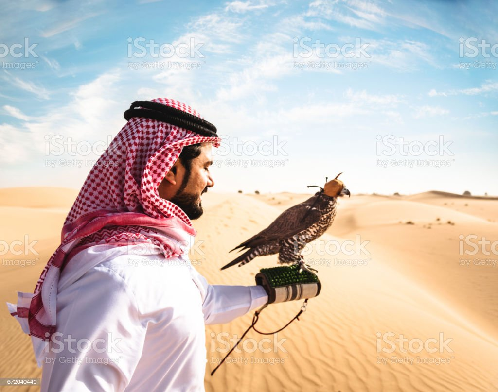 sheik with the falcon in the desert stock photo