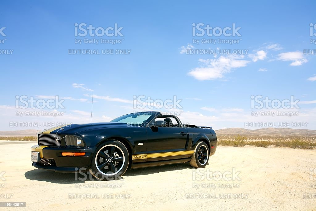 Shelby Mustang GT-H in Desert Scenery stock photo