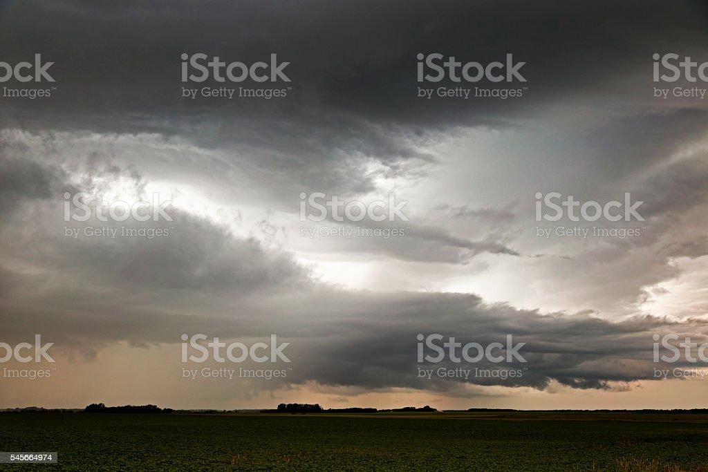 Shelf Cloud Over a Soybean Field stock photo