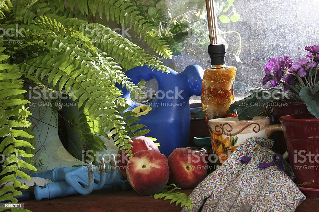 Shelf in potting shed.  Sunlight on window. royalty-free stock photo