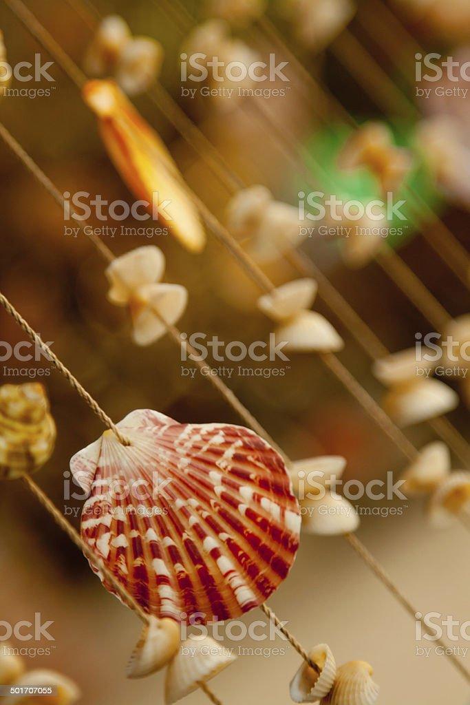 Shell curtain stock photo
