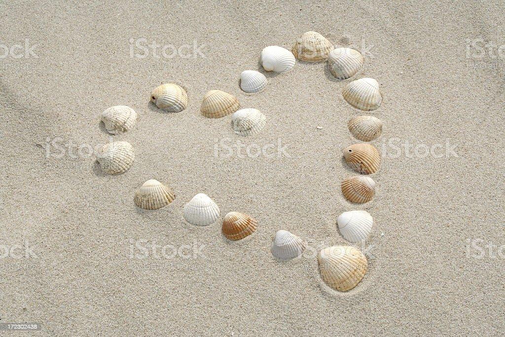 Shell love heart # 3 stock photo