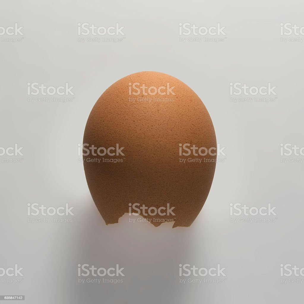 shell of an empty egg stock photo