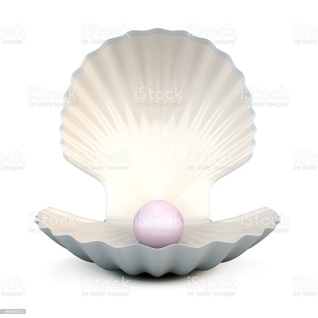 Shell pearl on a white stock photo