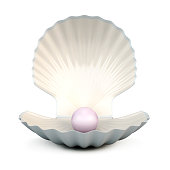 Shell pearl on a white