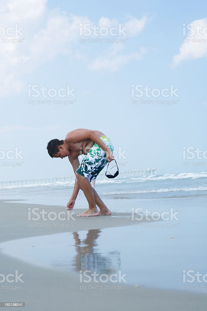 Shell picking by a young boy royalty-free stock photo