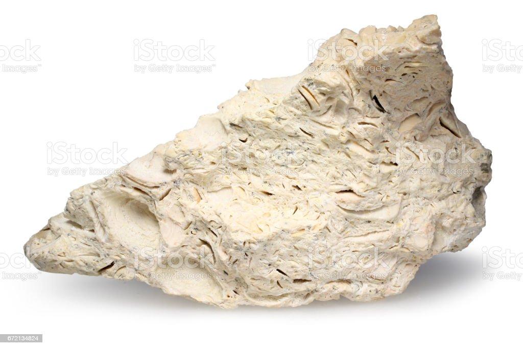 Shell rock – limestone isolated on white stock photo
