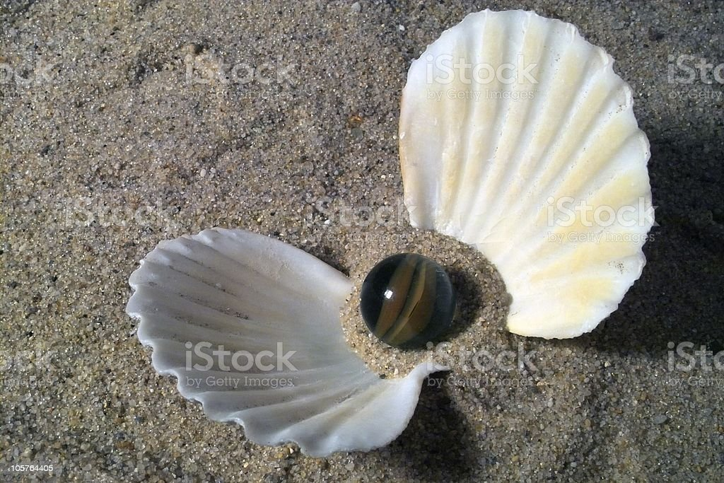 Shell with glass pearl royalty-free stock photo