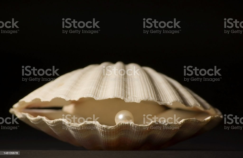 Shell with Pearl royalty-free stock photo