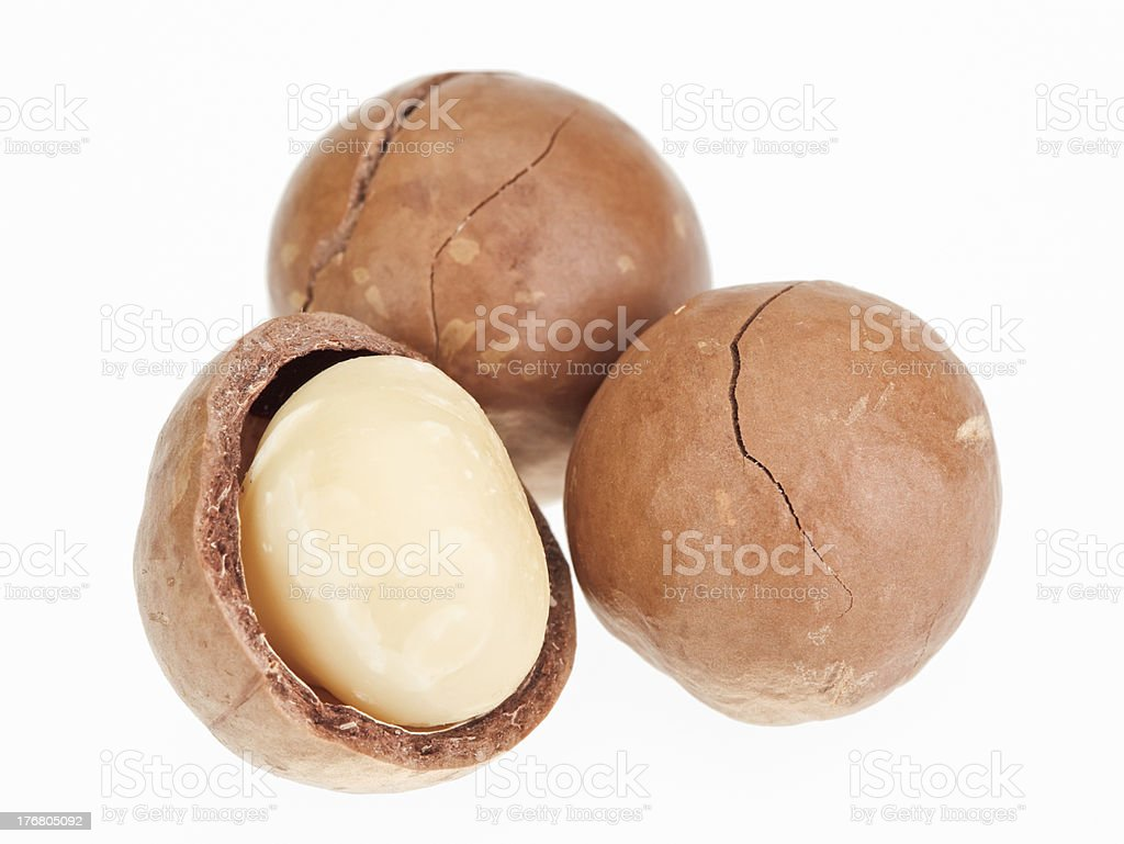 Shelled and unshelled macadamia nuts stock photo