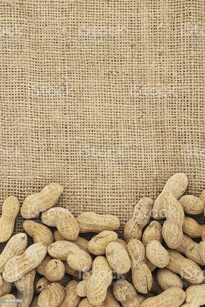 Shelled peanuts in the bottom of a tan background royalty-free stock photo