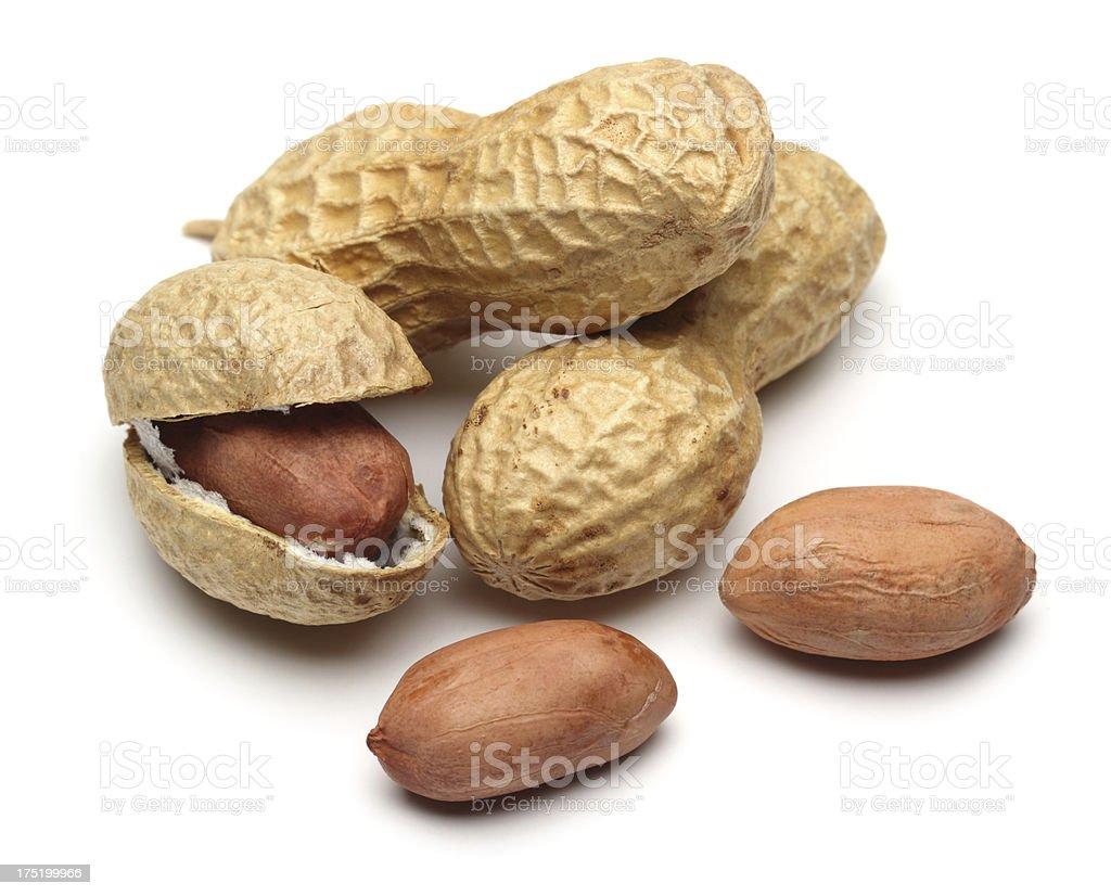 Shelled peanuts stock photo