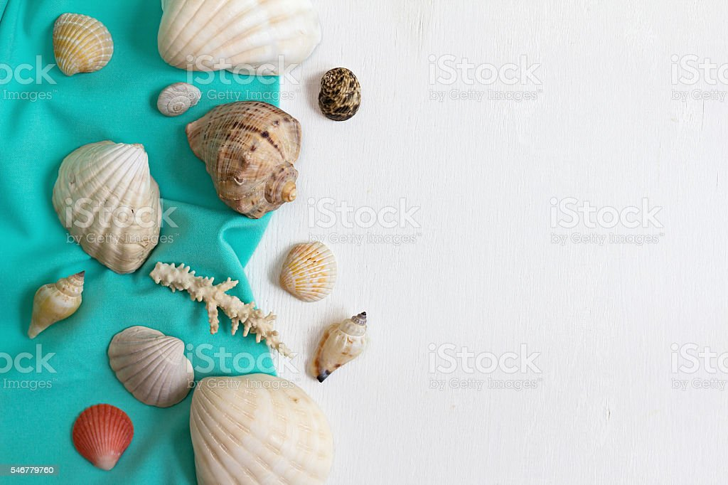 Shells and corals on a white wooden background. stock photo