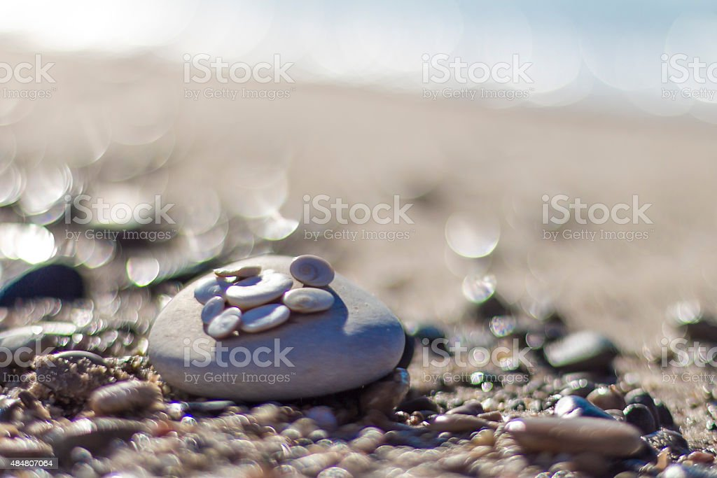 Shells and pebbles on the beach stock photo