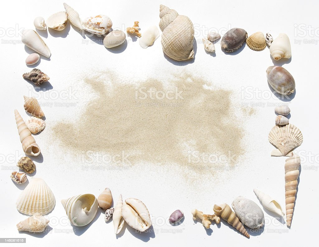 shells frame with sand stock photo