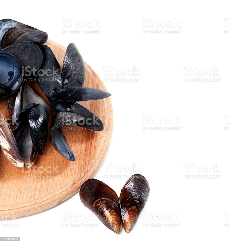 Shells of mussels on cutting board stock photo