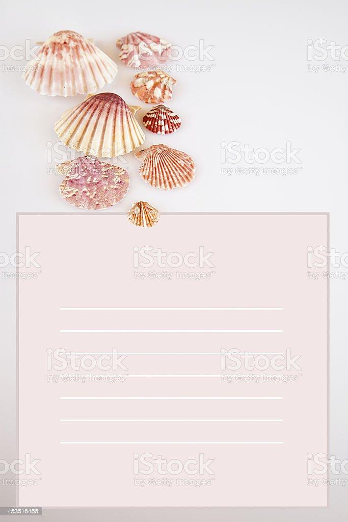 Shells postcard. royalty-free stock photo