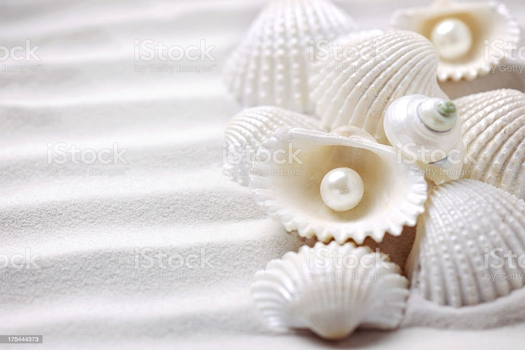 Shells with pearls royalty-free stock photo