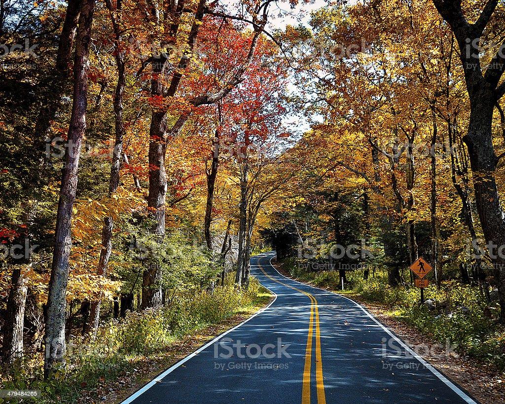 Shenandoah Autumn stock photo