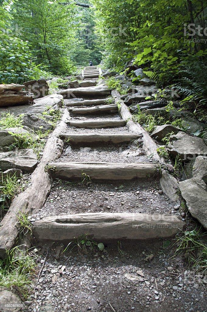 Shenandoah Nationalpark stock photo