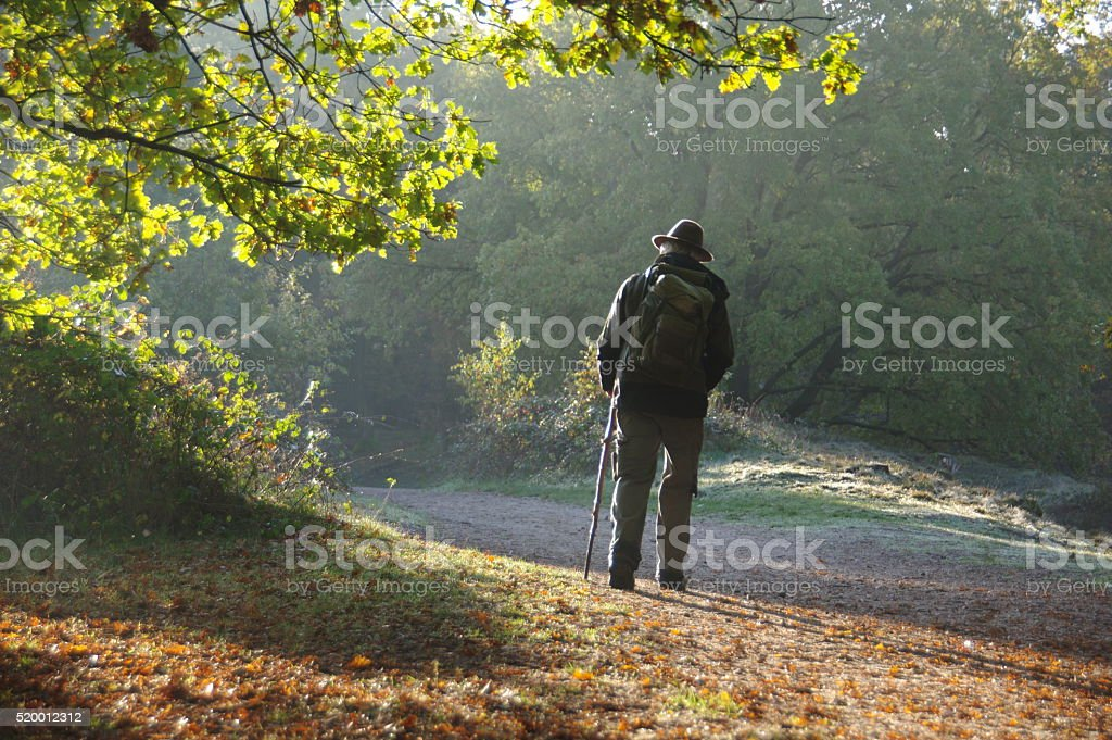 Shepherd in the morning stock photo