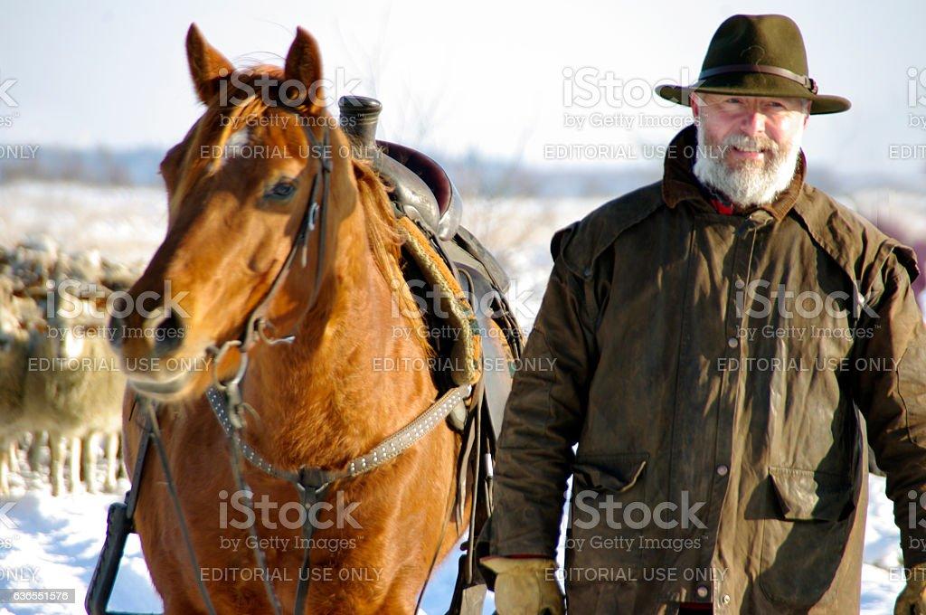 Shepherd leading his herd stock photo
