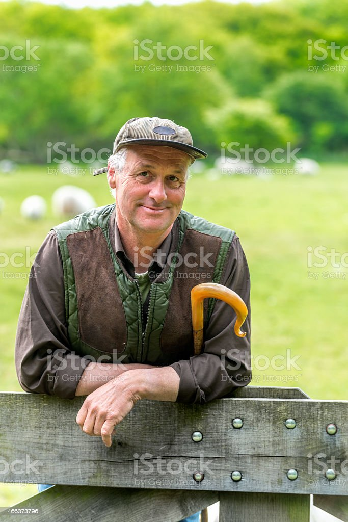 Shepherd leaning on fence with  his staff, little smile stock photo