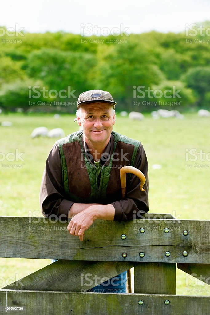Shepherd leaning on fence with  his staff stock photo
