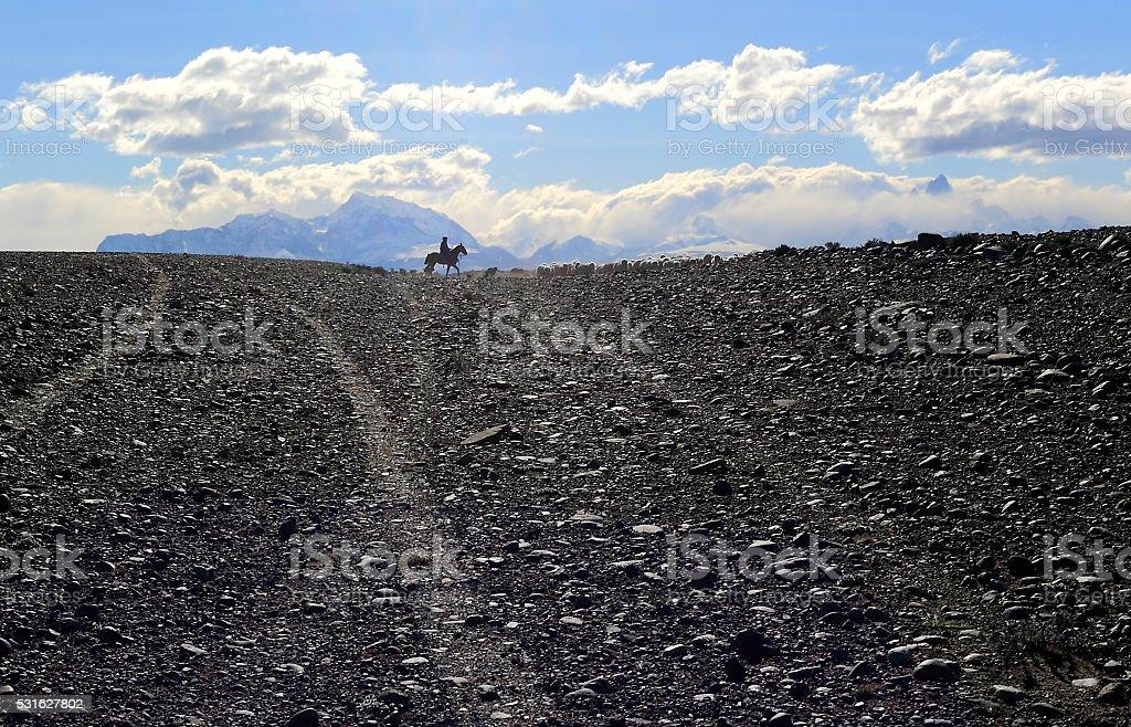 Shepherd on the road, Chalten, Patagonia Argentina. stock photo