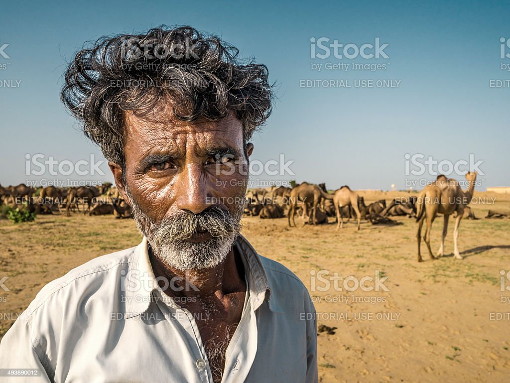 Shepherd with camels in Thar desert Rajasthan India stock photo