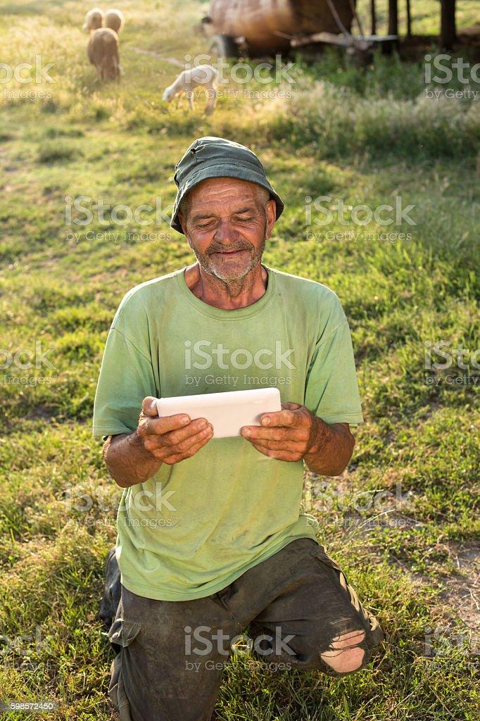 shepherd with tablet stock photo