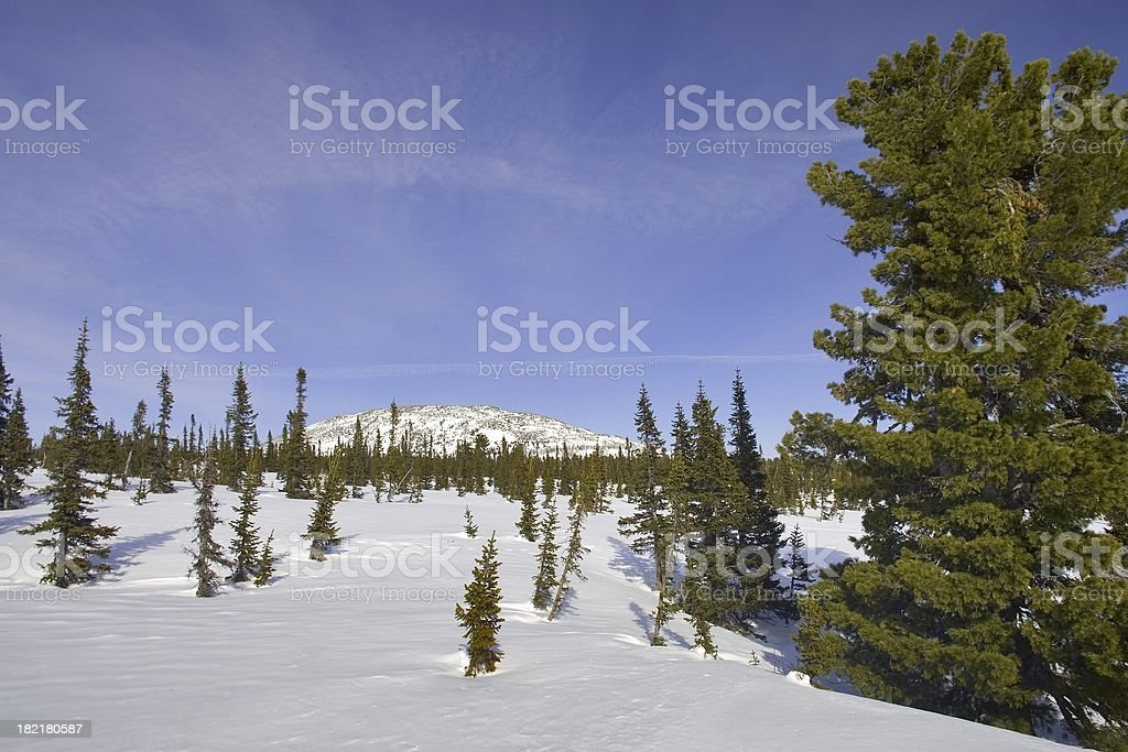 Sheregesh. Siberian mounts royalty-free stock photo