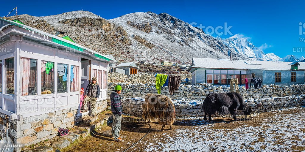 Sherpa family yaks traditional teahouse Himalayan mountain peaks panorama Nepal stock photo
