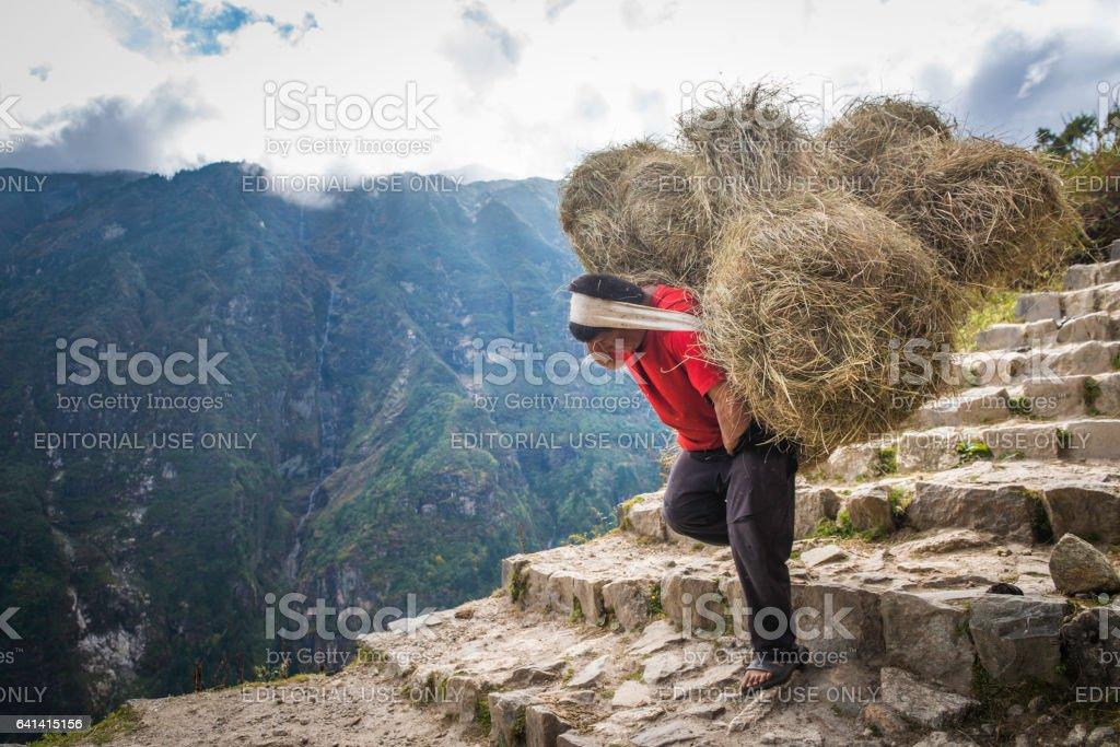 Sherpa porter carrying heavy load using headband Himalaya mountains Nepal stock photo
