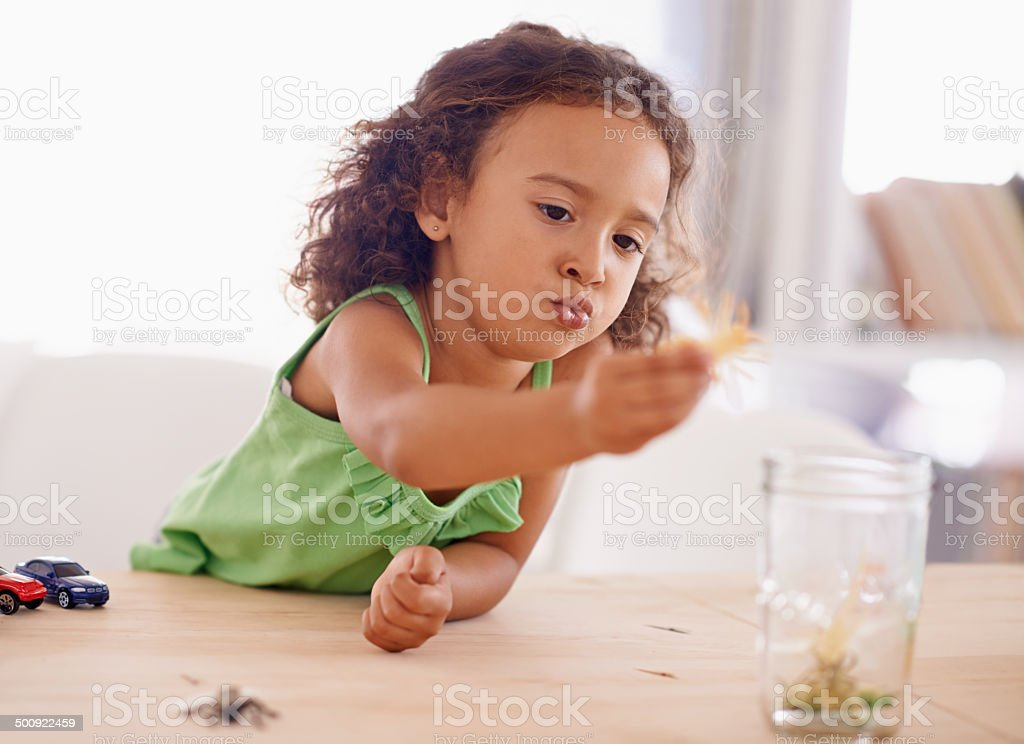 She's so curious! stock photo