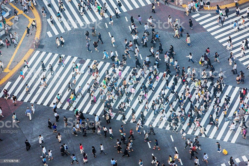 Shibuya Crossing Aerial stock photo