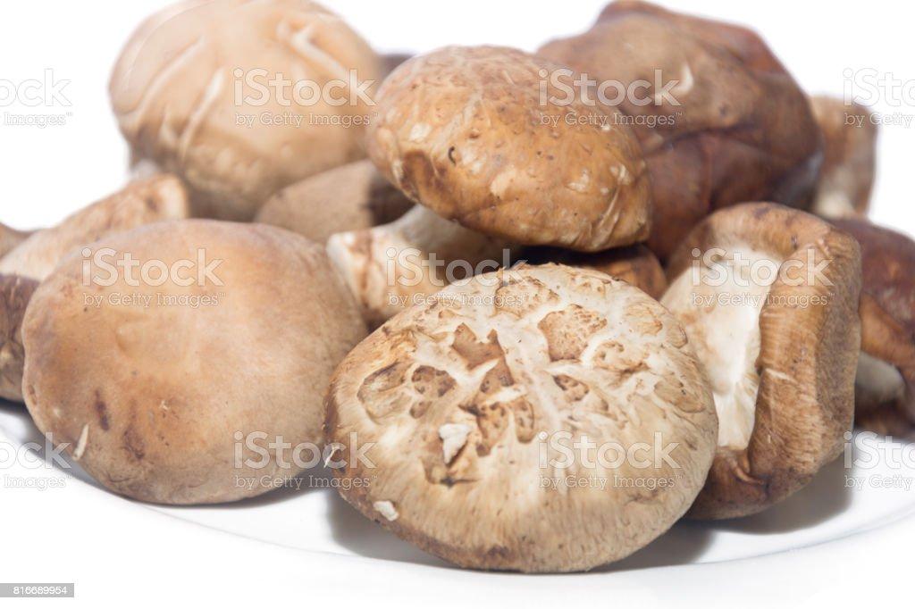 Shiitake Mushroom on white plate isolated on white stock photo