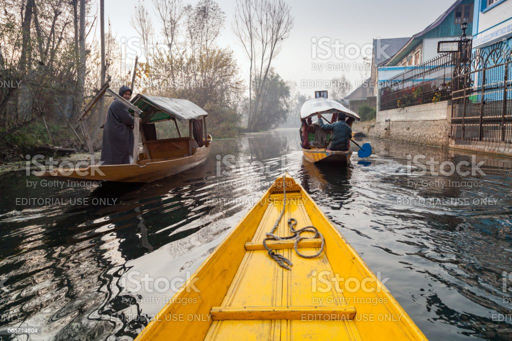 Shikara Boats in backwater of Dal lake, on sides are seen houses of local kashmiris stock photo
