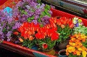 Shikara florist